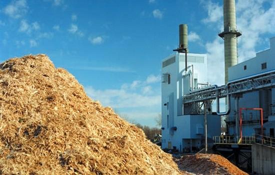 биомаса