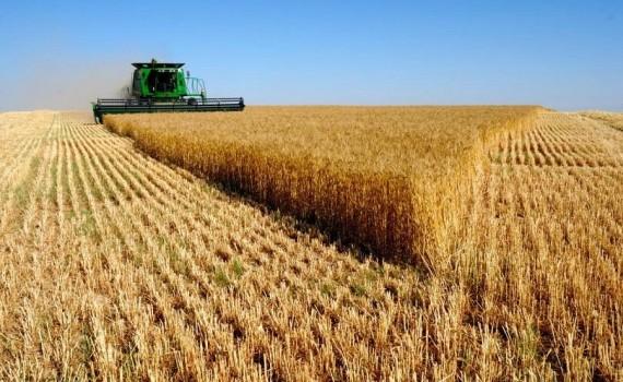 земеделие