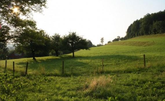 агроекологични плащания