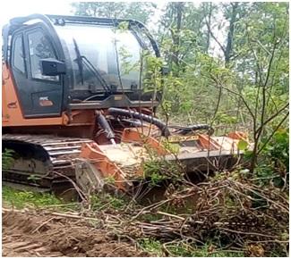 Почистване на сечища от дървесен отпад