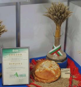 Сашец - диплома и хляб